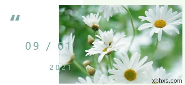 我想采一朵白菊花送给先烈们